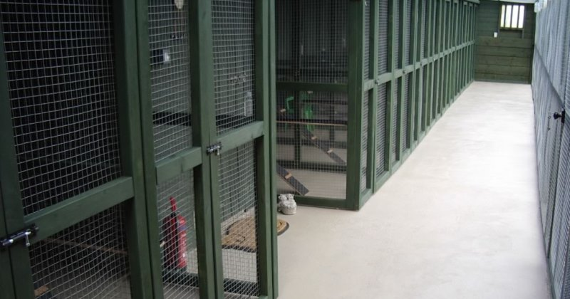 And with a few additions we were ready for business - showing entering the cattery safety area.